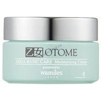 Otome Aqua Basic Care moisturising cream (Крем для лица увлажняющий), 40 гр -