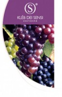 Jean Klebert ENOTHERMAE LINE Масло для тела антиоксидантное подтягивающее 500мл -
